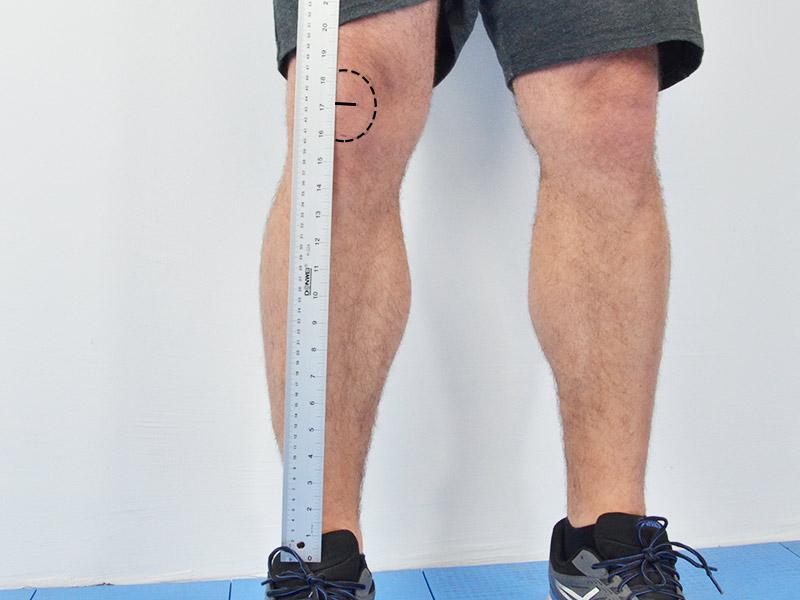 ball hockey shin guards measurement
