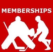 100% Ballhockey Canada T-shirt
